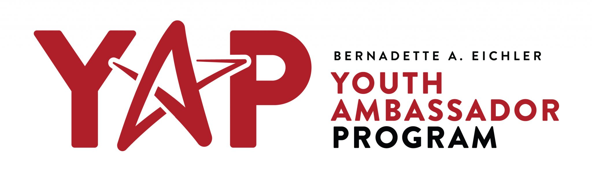 Youth Ambassador Program Now Accepting Applications
